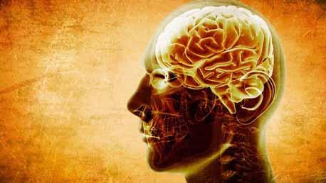 Postgrado Neuropsicología de los Trastornos del Neurodesarrollo
