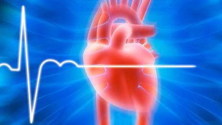 Curso Actualización en Cardiopatía Isquémica. Aspectos Relevantes de la Práctica Clínica en Atención Primaria Online