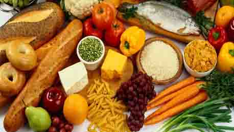Curso Especialista Profesional Gastronomía Nutrición