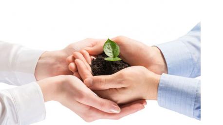 Postgrado online en Responsabilidad Social Corporativa