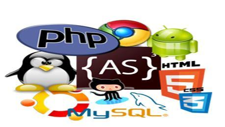 Curso Programación de Páginas Web