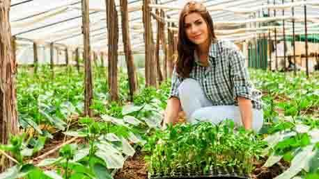 Curso Enseñanza Técnico Profesional de Horticultor